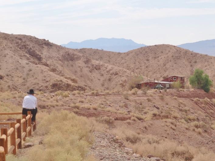 O solitário habitante do deserto