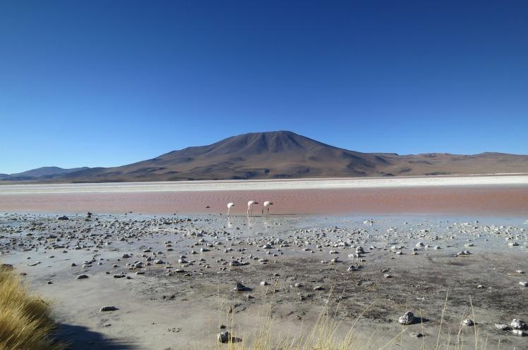 atacama-desert-594605_1280